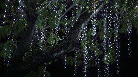 Το δέντρο που κρεμιέται με την ένωση των γιρλαντών όπως η ανασκόπηση είναι μπορεί θέμα απεικόνισης Χριστουγέννων χρησιμοποιούμενο απόθεμα βίντεο