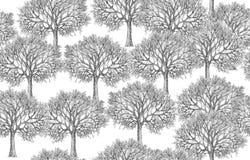Το δέντρο σκιαγραφεί το άνευ ραφής σχέδιο Στοκ εικόνα με δικαίωμα ελεύθερης χρήσης