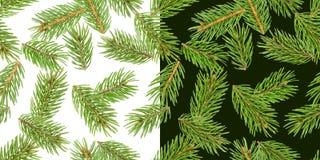 Το δέντρο του FIR διακλαδίζεται άνευ ραφής σχέδιο, κλάδος πεύκων, κωνοφόρο Χριστουγέννων που απομονώνεται στο άσπρο και πράσινο υ ελεύθερη απεικόνιση δικαιώματος