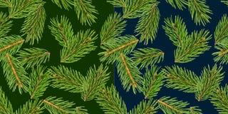 Το δέντρο του FIR διακλαδίζεται άνευ ραφής σχέδιο, κλάδος πεύκων, κωνοφόρο Χριστουγέννων που απομονώνεται στο πράσινο υπόβαθρο απεικόνιση αποθεμάτων