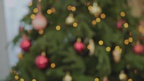 Το δέντρο του FIR Χριστουγέννων, ερυθρελάτες με το ασημένιο bokeh, τα σπινθηρίσματα της γιρλάντας, φω'τα ντεκόρ αφηρημένη ανασκόπ φιλμ μικρού μήκους