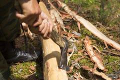 Το δασικό δασοφύλακας κρύβει τον κορμό του δέντρου με ένα τσεκούρι Στοκ Εικόνες