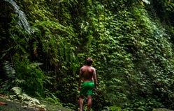 το δασικό μονοπάτι ζουγκλών στέκεται τον τουρίστα τροπικό Ελεύθερη θέση για το λογότυπο ή το κείμενό σας στοκ εικόνα