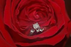 το δαχτυλίδι αυξήθηκε Στοκ Εικόνες