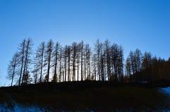 Το Δεκέμβριο Στοκ φωτογραφία με δικαίωμα ελεύθερης χρήσης
