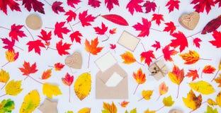 Το δημιουργικό τοπ επίπεδο φθινοπώρου άποψης βρέθηκε Αναπτυχθείτε με να πετάξει έξω τις κενές κάρτες και τα κιβώτια δώρων στο πεσ στοκ εικόνα