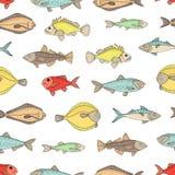 Το διάνυσμα χρωμάτισε το άνευ ραφής σχέδιο των ψαριών απεικόνιση αποθεμάτων