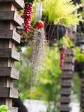Το διακοσμητικό κρεμώντας χέρι επεξεργάστηκε το βάζο φιαγμένο από συνθετικά λουλούδια και φύλλα πράσινων φυτών Στοκ Εικόνες