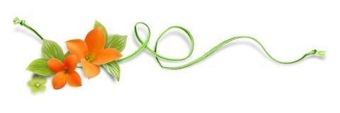 το διακοσμητικό στοιχείο ανθίζει το πορτοκάλι Στοκ εικόνες με δικαίωμα ελεύθερης χρήσης