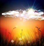 Το διανυσματικό ηλιοβασίλεμα ελεύθερη απεικόνιση δικαιώματος