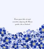 Το διανυσματικό μπλε με ξεχνά όχι λουλούδια Στοκ Φωτογραφία