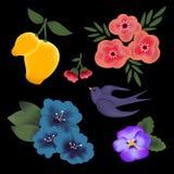 Το διανυσματικό σύνολο κομψών λουλουδιών, φρούτα και καταπίνει απομονωμένος στο μαύρο υπόβαθρο ελεύθερη απεικόνιση δικαιώματος