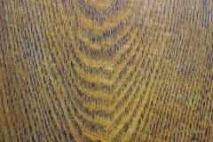 Το δρύινο ξύλο είναι ανθεκτικό, ισχυρό, πυκνό, σκληρό και βαρύ στοκ εικόνα με δικαίωμα ελεύθερης χρήσης