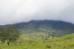 Το εθνικά πάρκο και το ηφαίστειο arenal στην ομίχλη, Κόστα Ρίκα Στοκ Εικόνες