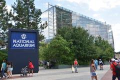Το εθνικό ενυδρείο στη Βαλτιμόρη, Μέρυλαντ Στοκ Εικόνες