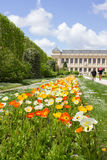Το Εθνικό Μουσείο της φυσικής ιστορίας στο Παρίσι Στοκ εικόνες με δικαίωμα ελεύθερης χρήσης