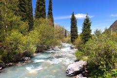 Το εθνικό πάρκο της ΑΛΑ Archa στα βουνά Tian Shan Bishkek Κιργιστάν Στοκ Εικόνες
