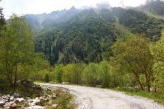 Το εθνικό πάρκο της ΑΛΑ Archa στα βουνά Tian Shan Bishkek Κιργιστάν Στοκ φωτογραφία με δικαίωμα ελεύθερης χρήσης