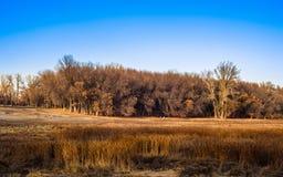 Το εθνικό πάρκο στοκ εικόνα