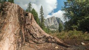 Το εθνικό πάρκο Yosemite αποκαλύπτει απόθεμα βίντεο