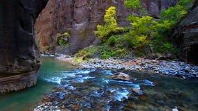 Το εθνικό πάρκο Zion στενεύει απόθεμα βίντεο