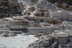 Το εθνικό U πάρκων Yellowstone S Εθνική υπηρεσία πάρκων στοκ εικόνες