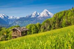 Το ειδυλλιακό τοπίο στις Άλπεις με το παραδοσιακό βουνό κατοικεί Στοκ Εικόνες