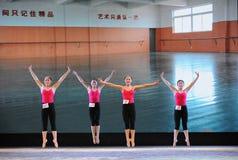 Το εκπαιδευτικό μάθημα χορού άλματος εκπαιδεύω-βασικό Στοκ Φωτογραφία
