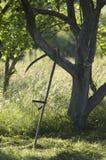 Το εκλεκτής ποιότητας ρωσικό δρεπάνι είναι κοντά στο Apple-δέντρο Στοκ Εικόνα