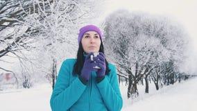 Το ελκυστικό κορίτσι εξετάζει τη κάμερα και πίνει το καυτό τσάι Στοκ εικόνα με δικαίωμα ελεύθερης χρήσης