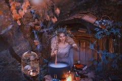 Το ελκυστικό νέο κορίτσι με τα ξανθά μαλλιά με ένα καταπληκτικό πολύβλαστο στεφάνι στο κεφάλι της στο δάσος προετοιμάζει έναν μεγ στοκ εικόνα