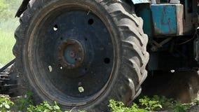 Το επίμοχθο τρακτέρ καλλιεργεί έναν τομέα με τις πράσινες εγκαταστάσεις το καλοκαίρι απόθεμα βίντεο