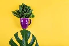 Το επίπεδο φρούτων και λαχανικών βάζει το ύφος στοκ φωτογραφία