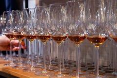 Το επαγγελματικό άτομο-cavist παίρνει το γυαλί κρασιού με το κονιάκ από το ξύλινο ράφι στην κάβα Έννοια των πνευμάτων degustation στοκ φωτογραφία με δικαίωμα ελεύθερης χρήσης