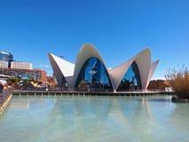 Το εστιατόριο από το L'Oceanographic στη Βαλένθια, Ισπανία στοκ φωτογραφίες με δικαίωμα ελεύθερης χρήσης