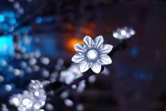 Το λευκό αστράφτει φως Στοκ Εικόνες