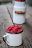 Το λευκό μπορεί και να κλέψει με το φρέσκο σμέουρο Στοκ φωτογραφία με δικαίωμα ελεύθερης χρήσης