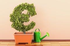 Το ευρο- πράσινο σύμβολο flowerpot με το πότισμα μπορεί τρισδιάστατη απόδοση Στοκ φωτογραφία με δικαίωμα ελεύθερης χρήσης