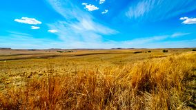 Το ευρύ ανοικτό καλλιεργήσιμο έδαφος και τα απόμακρα βουνά κατά μήκος N3 μεταξύ του φύλακα και Villiers στην ελεύθερη κρατική επα Στοκ φωτογραφία με δικαίωμα ελεύθερης χρήσης