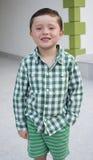Το ευτυχές αγόρι απολαμβάνει Στοκ Εικόνα
