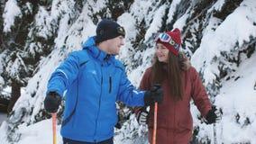 Το ευτυχές ζεύγος των σκιέρ στο χιονοδρομικό κέντρο του γέλιου και της ομιλίας κοντά στα χιονισμένα δέντρα πεύκων απόθεμα βίντεο