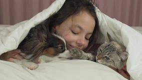 Το ευτυχές κορίτσι εφήβων επικοινωνεί με το σκυλί Papillon και την ταϊλανδική γάτα στο βίντεο μήκους σε πόδηα αποθεμάτων κρεβατιώ απόθεμα βίντεο