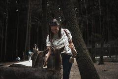 Το ευτυχές κορίτσι Backerpacker ταΐζει μερικά ελάφια σε έναν wildpar στοκ φωτογραφία με δικαίωμα ελεύθερης χρήσης