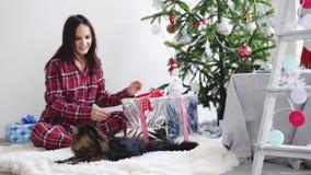 Το ευτυχές κορίτσι brunette έρχεται στα παιχνίδια χριστουγεννιάτικων δέντρων με τη γάτα του Maine coon ανοίγει το δώρο με να εξαπ απόθεμα βίντεο