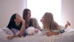 Το ευτυχές κουτσομπολιό κοριτσιών φίλων και έχει τη διασκέδαση κατά τη διάρκεια slumber του κόμματος που βρίσκεται σε ένα κρεβάτι απόθεμα βίντεο