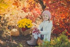 Το ευτυχές μικρό κορίτσι φθινοπώρου έχει το παιχνίδι διασκέδασης με τα πεσμένα χρυσά φύλλα Στοκ φωτογραφία με δικαίωμα ελεύθερης χρήσης