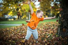 Το ευτυχές μικρό παιδί έχει το παιχνίδι διασκέδασης με τα πεσμένα χρυσά φύλλα Στοκ φωτογραφία με δικαίωμα ελεύθερης χρήσης