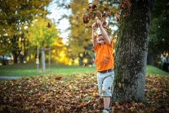 Το ευτυχές μικρό παιδί έχει το παιχνίδι διασκέδασης με τα πεσμένα χρυσά φύλλα Στοκ Εικόνες