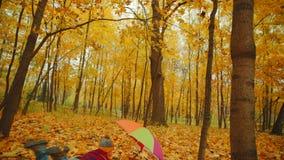 Το ευτυχές μικρό παιδί περπατά στο πάρκο φθινοπώρου κάτω από την ομπρέλα απόθεμα βίντεο