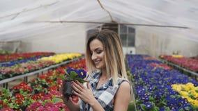 Το ευτυχές όμορφο κορίτσι μυρίζει και επιλέγει τα λουλούδια στο θερμοκήπιο 4K απόθεμα βίντεο